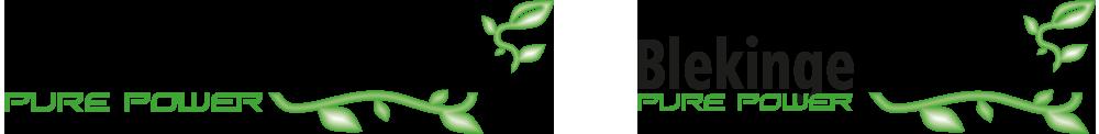 Biogas – Pure Power